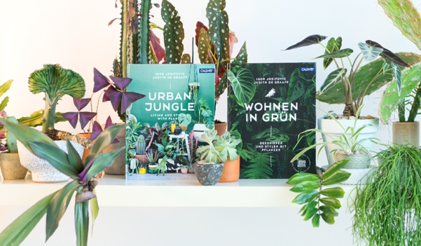 urbanjunglebloggers-urban-jungle-books-wohnen-in-gruen